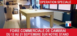 la passion du billard magasin de billard direct fabricant nord pas de calais belgique 59 62. Black Bedroom Furniture Sets. Home Design Ideas